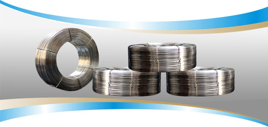Nylon coated wire manufacturer, Dbind at Printpack India 2019